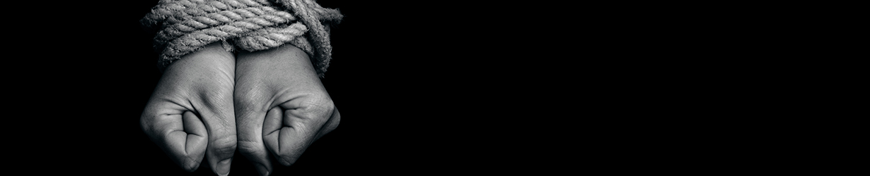 mdc_banner